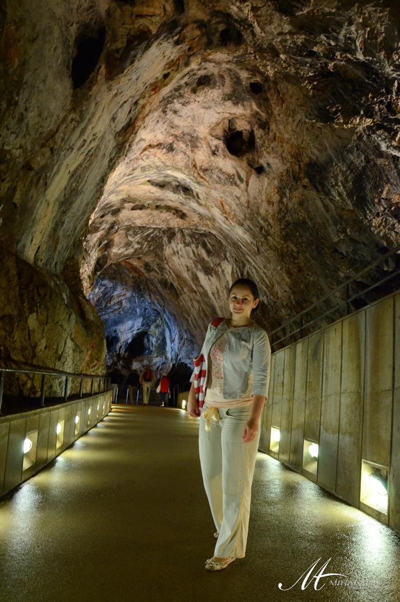 Slovenia_Slovejna_pestera_postojna_Slovenia_postojna_cave_0006