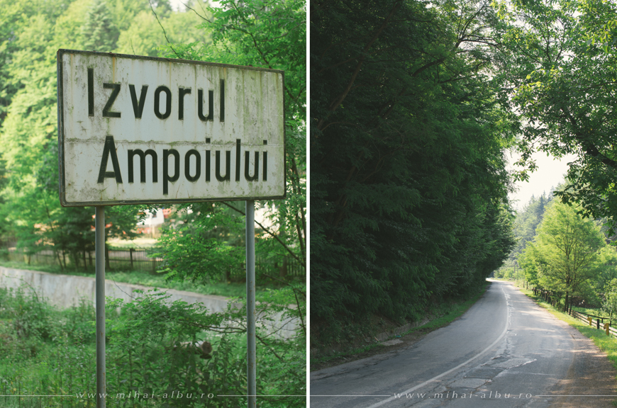 Simona&Adi_nunta_Alba_Alba_iulia_poze_nunta_alba_iulia_0001