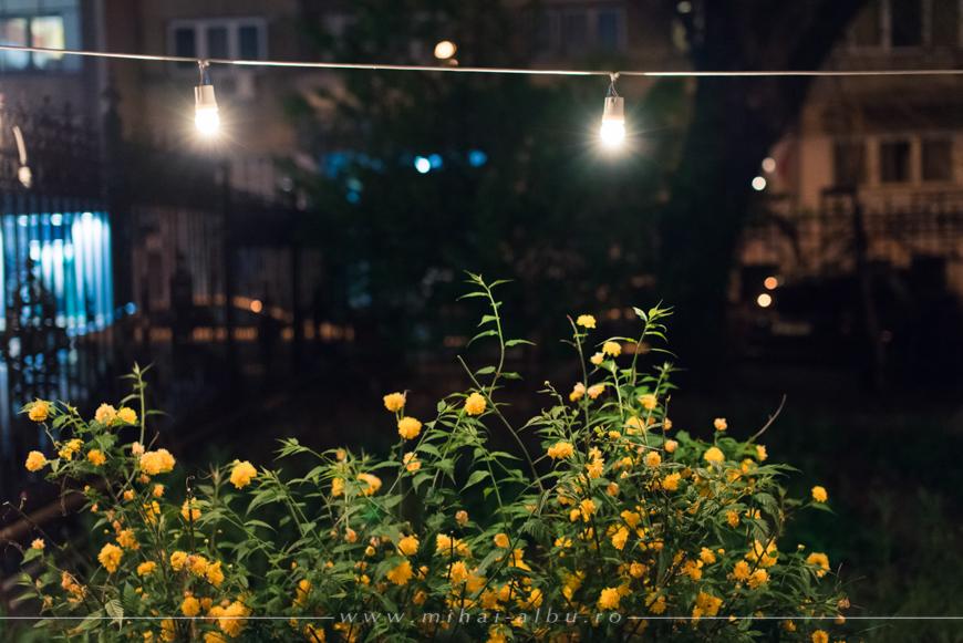 poze_noaptea_galeriilor_fotografii_noaptea_Galeriilor_0015