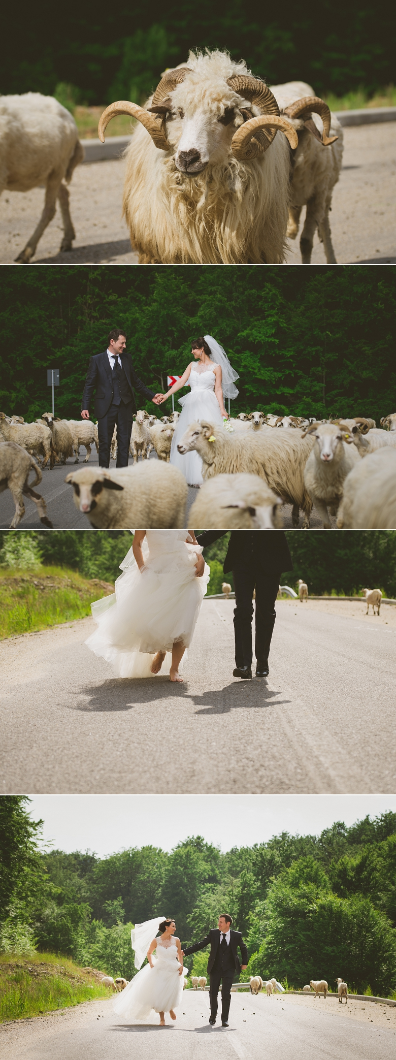 sedinta_foto_dupa_nunta_negresti_satu_mare_after_weeding_satu_mare_trash_the_dress_satu_mare 5